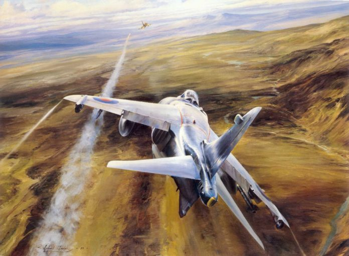 Interview with Commander 'Sharkey' Ward: Sea Harrier FRS Mk 1 and Air Combat